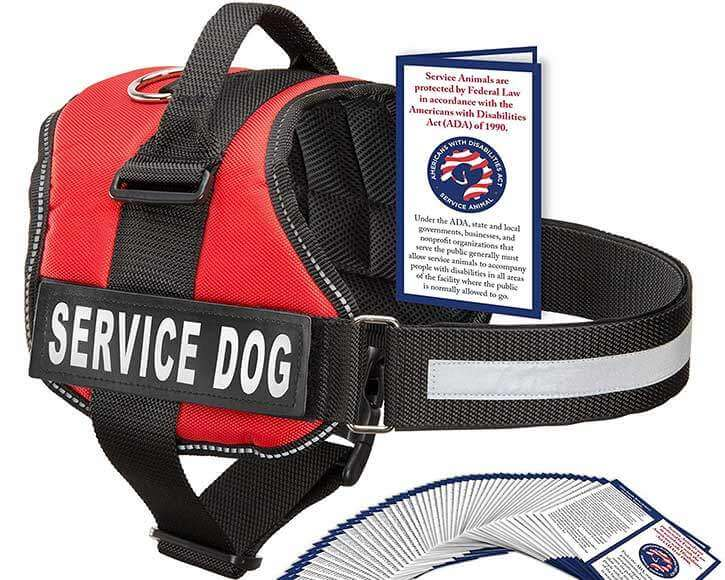 Industrial Puppy Harness Vest with Pouch (Red)