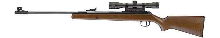 .22 Caliber Air Rifle