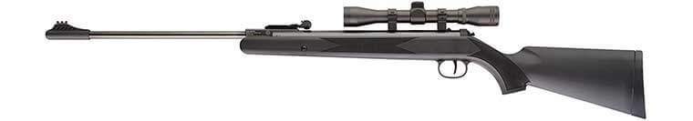 Ruger Air Rifle