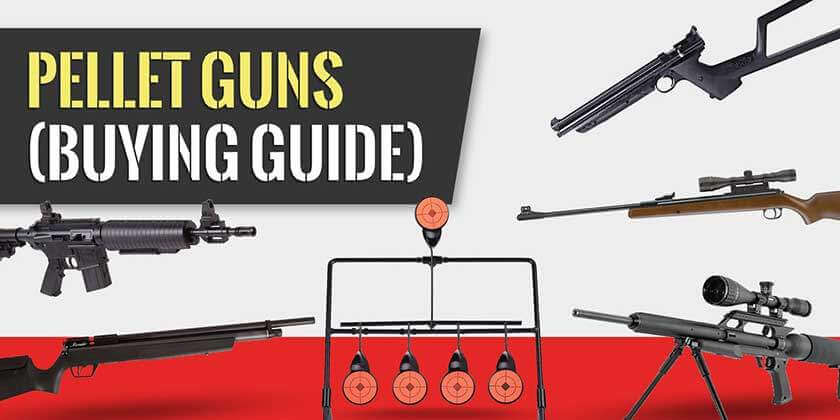 Pellet Gun Buying Guide (Top of Page Image)