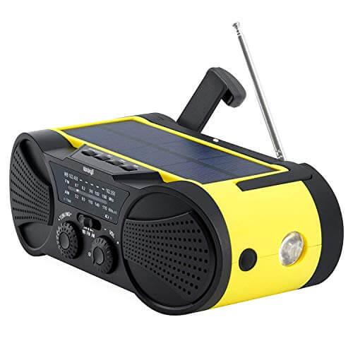 Wayl Buzz4000 3000 mAH Radio Combo