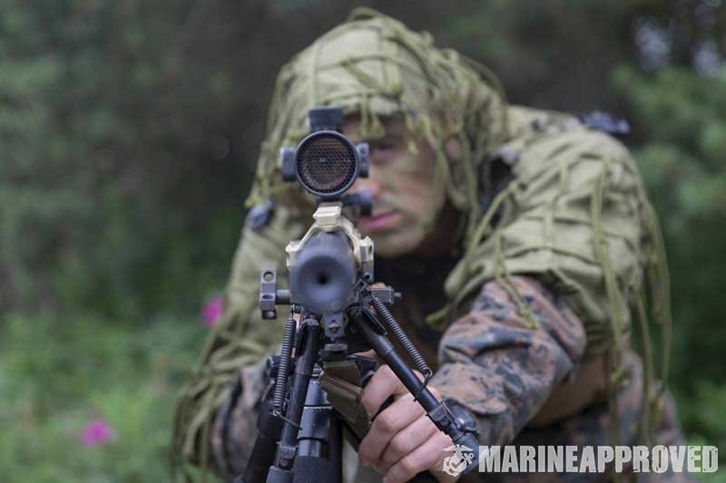 Marine Sniper Aiming Long Range Rifle