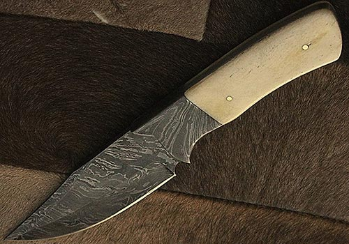 Knife with Bone Handle