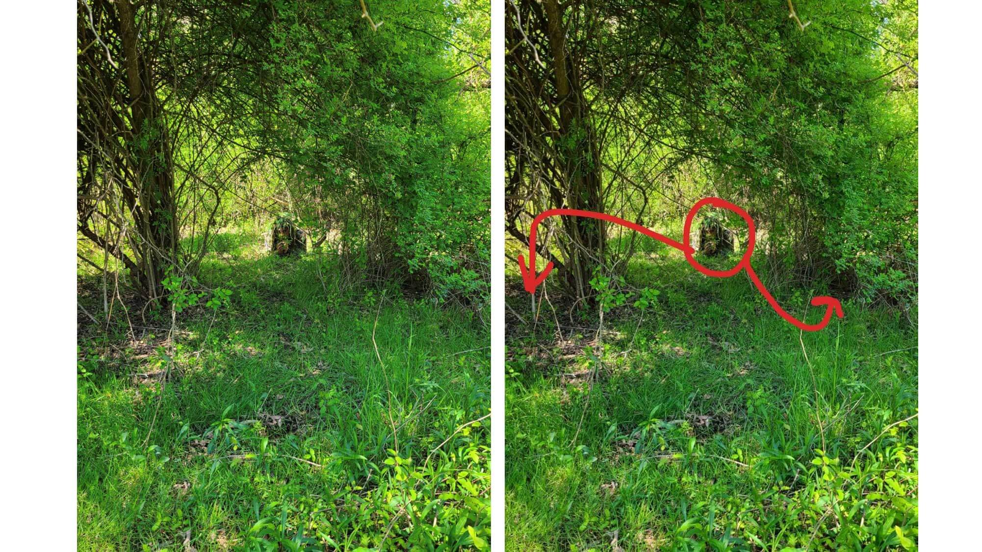 Ghillie suit contrast example